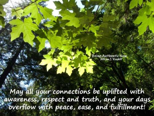 Connections Uplifted