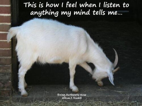 Listening to My Mind